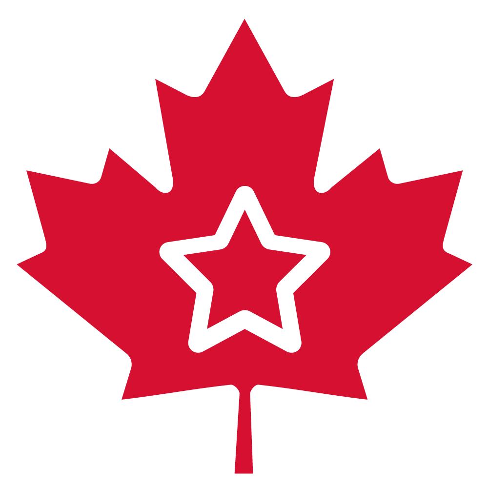 Logo der Sozialhelden in einem Ahornblatt